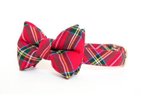 Classic,Red,Tartan,Bowtie,Dog,Collar,dog collar, dog bow tie, dog bowtie, bow tie dog collar, bowtie dog collar, christmas dog collar, plaid dog collar, tartan, red plaid dog collar, red, green