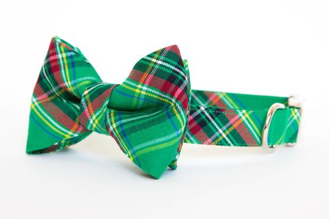 Classic,Green,Tartan,Bowtie,Dog,Collar,dog collar, dog bow tie, dog bowtie, bow tie dog collar, bowtie dog collar, christmas dog collar, plaid dog collar, tartan, green plaid dog collar, red, green, emerald