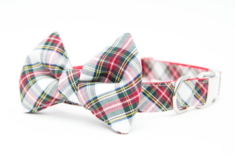 Classic Ivory Tartan Bowtie Dog Collar - product images  of