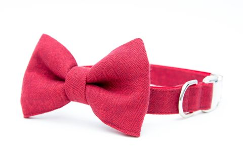 Red,Flannel,Herringbone,Bowtie,Dog,Collar,dog collar, dog bow tie, dog bowtie, bow tie dog collar, bowtie dog collar, christmas dog collar, herringbone dog collar, houndstooth, red herringbone dog collar, red