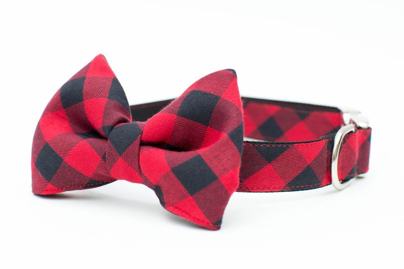 Red Buffalo Check Bowtie Dog Collar - product images  of