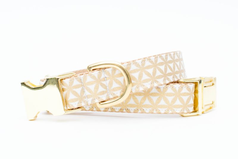 Metallic Gold Trellis Dog Collar - product image