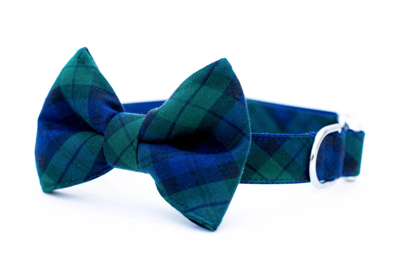 Blackwatch Plaid Bowtie Dog Collar - product images  of