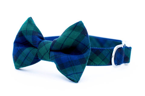 Blackwatch,Plaid,Bowtie,Dog,Collar,dog collar, dog bow tie, dog bowtie, bow tie dog collar, bowtie dog collar, plaid, tartan