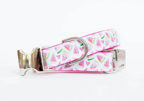 Waggin',Watermelon,Dog,Collar,fruit dog collar, dog collar, southern dog collar, watermelon, watermelon dog collar, summer dog collar, yellow dog collar