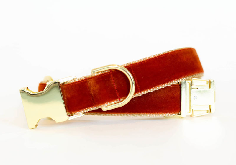 Autumn Velvet Dog Collar in Cinnamon - product images  of