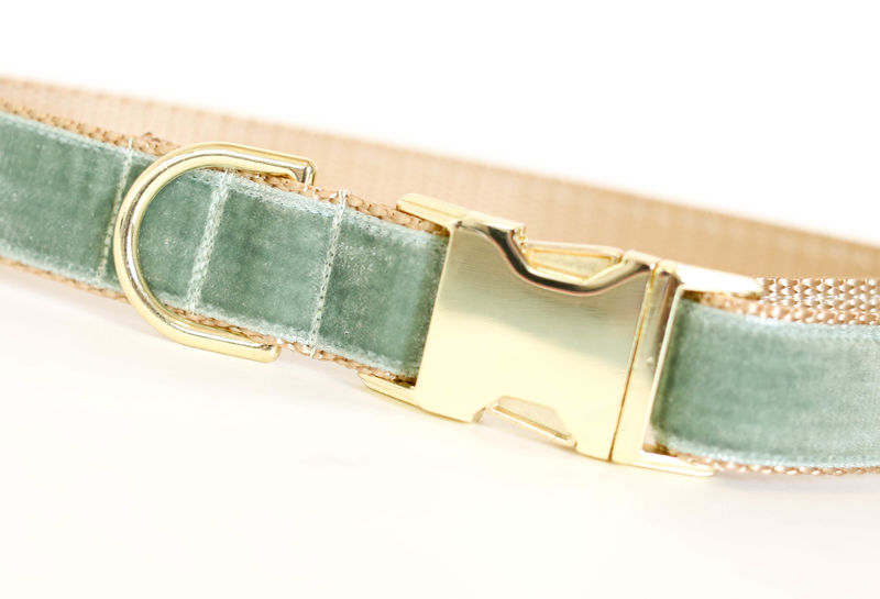 Autumn Velvet Dog Collar in Sage - product images  of