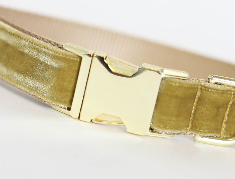 Autumn Velvet Dog Collar in Amber - product images  of