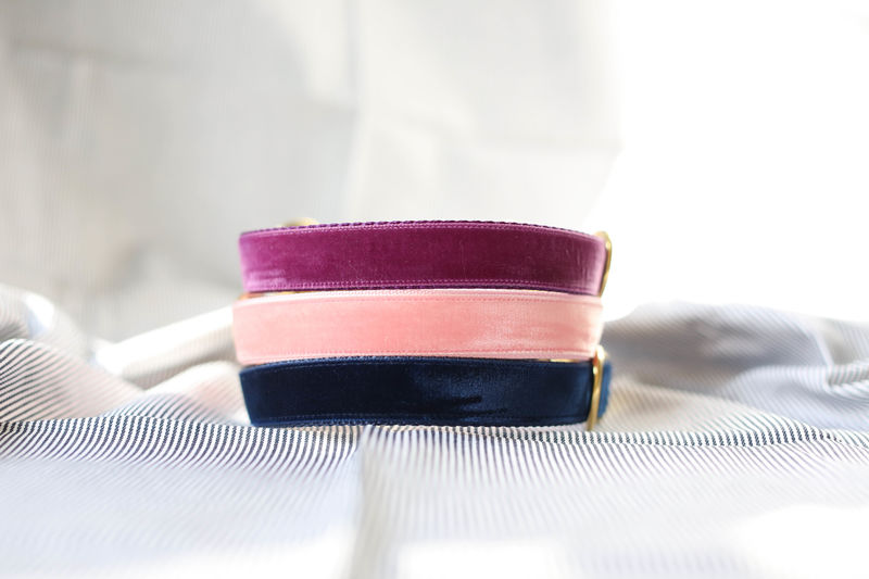 Luxe Velvet Dog Collar in Midnight Navy - product images  of