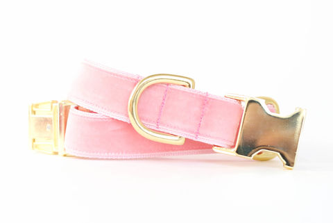 Luxe,Velvet,Dog,Collar,in,Blush,Pink,velvet dog collar, velveteen dog collar, classic velvet, classic dog collar, vintage style dog collar, blush pink velvet dog collar, pale pink velvet dog collar, ballet pink velvet