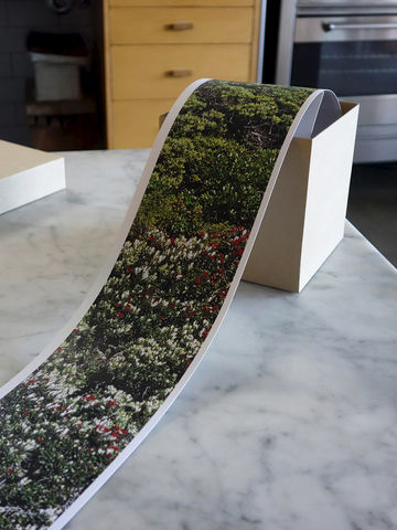 Bush with Pohutukawa Scroll - product images  of