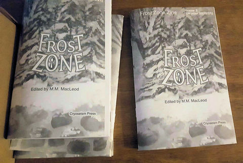Coming,soon,(not,sold,out),Frost,Zone,Zine,2,Winter,2020/21,B&W,saddle-stitched,issue,paper zine, black and white, grey tone, B&W zine, saddle stitched, stapled zine, physical zine
