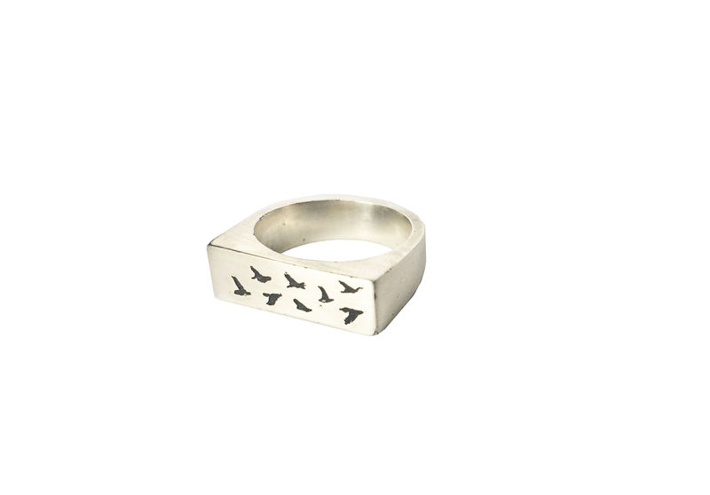 Birds in flight ring - product images  of