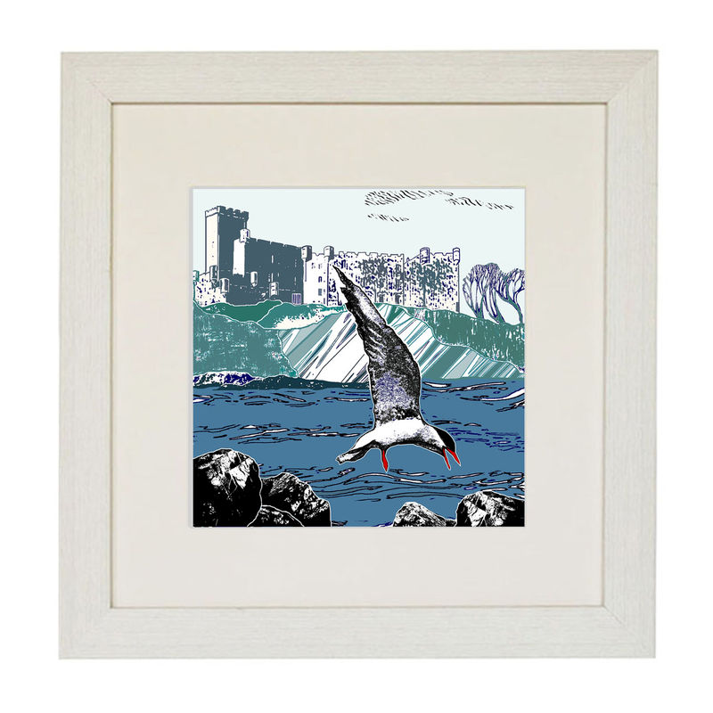 TERN, TERN - Limited Edition Giclee Print - product images  of