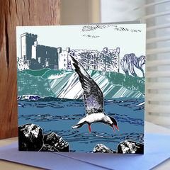 Tern,,Tern,-,pack,of,4,greetings,cards,Greetings cards, , cuckoo tree, tern tern, Isle of Skye, Denise Huddleston, Cuckoo Tree Studio, Greetings Cards