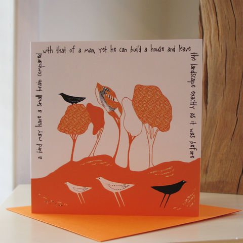 Wild,Woodland,(tangerine),-,pack,of,4,greetings,cards,Greetings cards, Wild woodland, tangerine, cuckoo tree, Isle of Skye, Denise Huddleston, Cuckoo Tree Studio, Greetings Cards