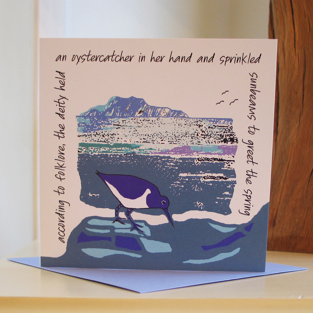 Oystercatcher - pack of 4 greetings cards - product image