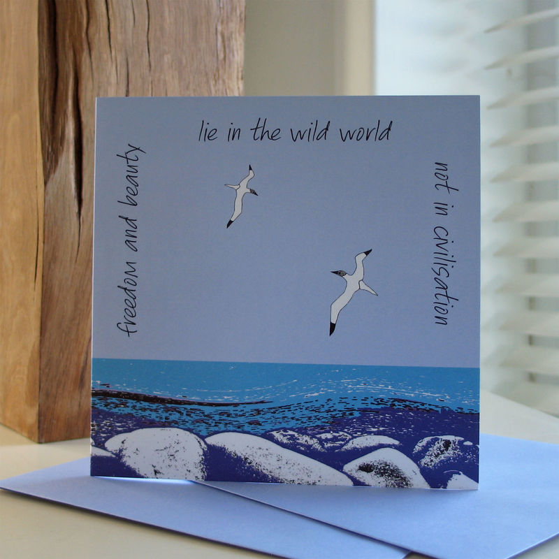 Wild Coast - pack of 4 greetings cards - product image