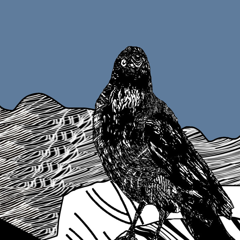 RAVEN, denim - Limited Edition Giclee Print - product images  of