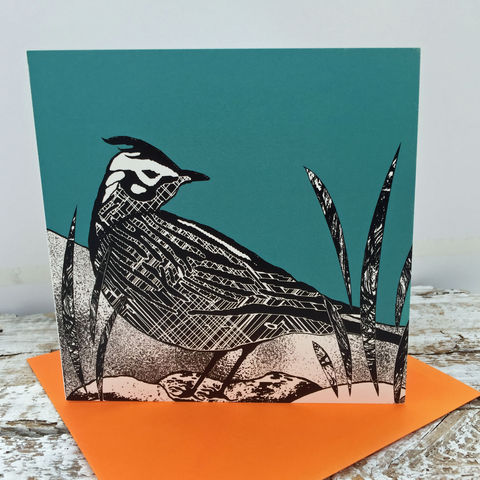 Summer,Visitor,-,Skylark,(teal),pack,of,4,greetings,cards,Greetings cards, skylark, cuckoo tree, Isle of Skye, Denise Huddleston, Cuckoo Tree Studio, Greetings Cards, green,