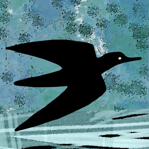 WATERBIRD,-,Limited,Edition,Giclee,Print,giclee print,art print,cuckoo tree studio,denise huddleston,isle of skye, scottish art,skye art,birds,