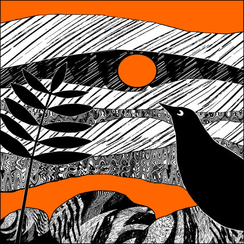 BLACKBIRD,,tangerine,-,Limited,Edition,Giclee,Print,giclee print,art print,cuckoo tree studio,denise huddleston,isle of skye, scottish art,skye art,birds