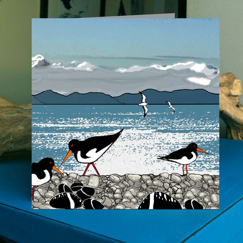 Oystercatchers,-,pack,of,4,greetings,cards,Greetings cards, oystercatchers, Isle of Skye, Denise Huddleston, Cuckoo Tree Studio, Greetings Cards, Coastal