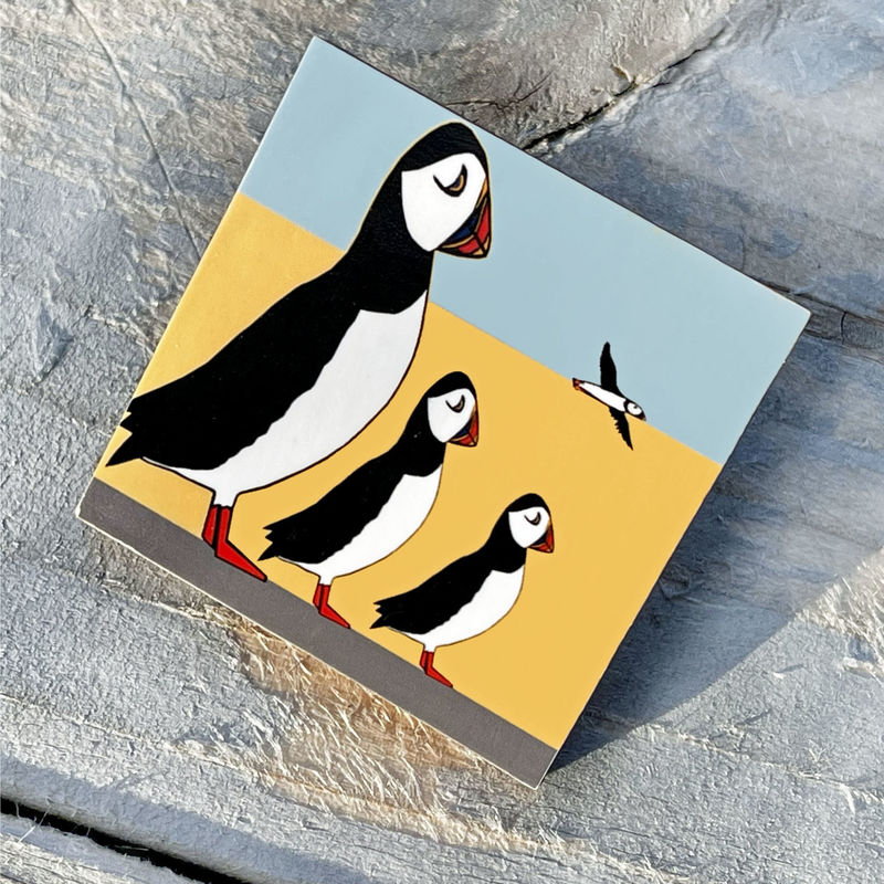 'Puffin Family' Brooch - product images  of