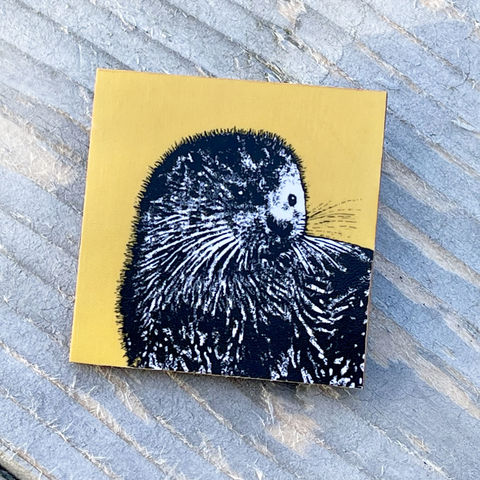 'Young,Otter',Brooch,-,yellow,Skye, Isle of Skye,otter, yellow otter brooch, jewellery, Gifts under £20.00, inexpensive, handmade gift, teal blue,handmade craft, brooch, denise huddleston, isle of skye jewellery, fun, wooden