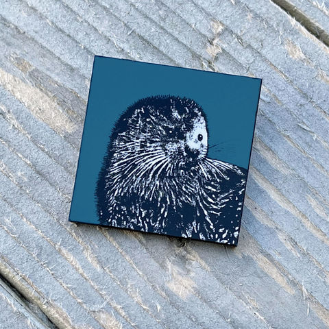 'Young,Otter',Brooch,-,deep,teal,blue,Skye, Isle of Skye,otter, otter brooch, jewellery, Gifts under £20.00, inexpensive, handmade gift, teal blue,handmade craft, brooch, denise huddleston, isle of skye jewellery, fun, wooden