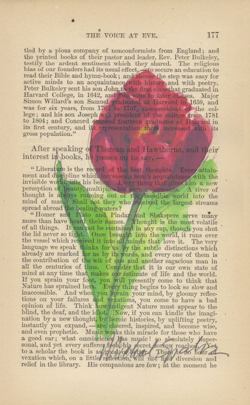 Ruby Red Tulip Watercolor Print on Antique Book Page - product image