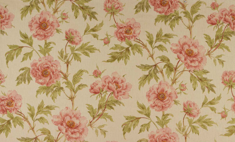 Tree Peony | Colefax & Fowler - product images  of