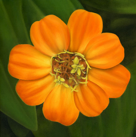 Pretty,Flower,(original),orange flower, wild flower, flower painting