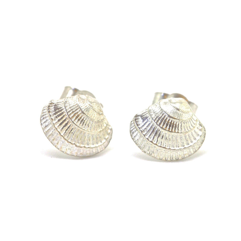 Silver Venus Shell studs by KristinM - product images