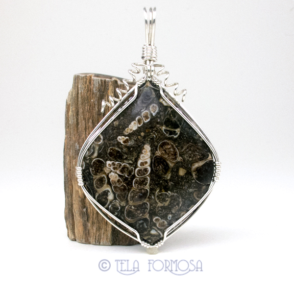 Turritella wire wrapped pendant tela formosa