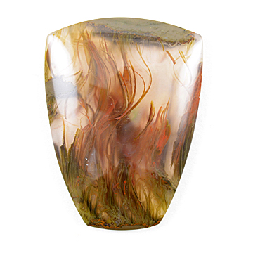 What Is A Thunder Egg, ThunderEgg or T Egg?