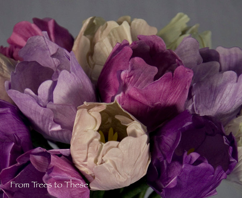 Tulip Bouquet Set - product images  of