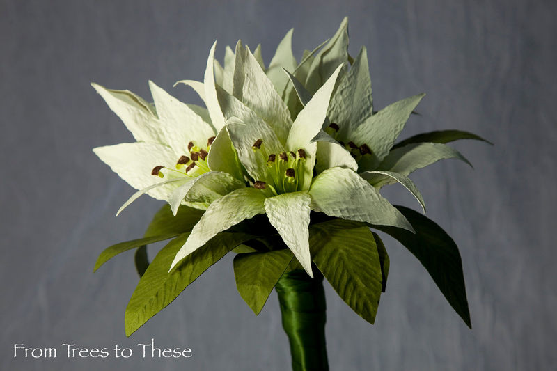 Lily Bouquet Set - product images  of