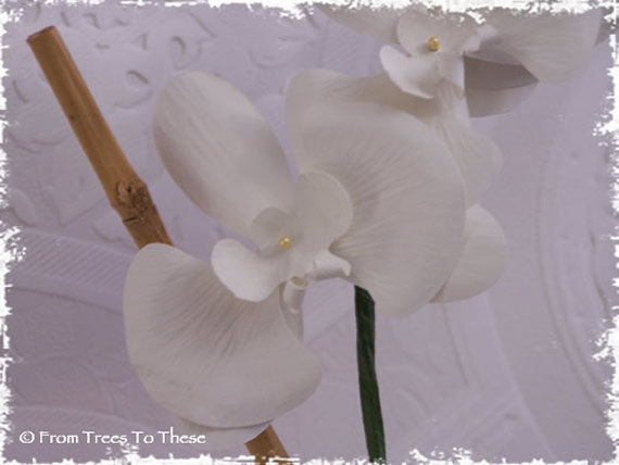 Orchid Flower Plant (Single Stem) - product images  of
