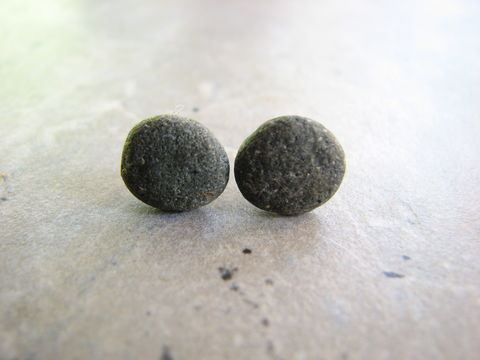 Gray,Beach,Stone,Stud,Earrings,gray beach stone stud earrings, grey rock earrings, natural stone jewelry, unisex, stone men earrings, rock earrings for men, nature, beach, ocean, nautical, smooth stones, flat stones.