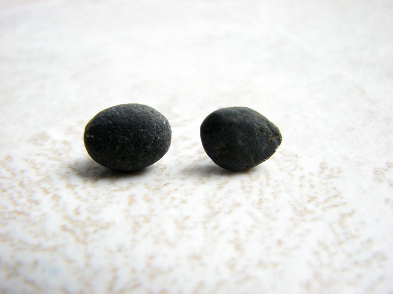 Small Black Ocean Rock Stud Earrings - product images  of