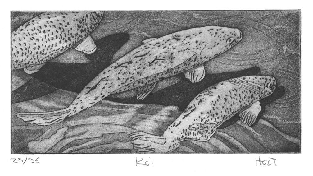 Koi fish etching with aquatint hand pulled art print in black and white