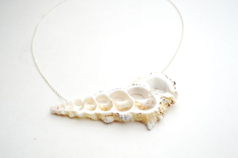 Shell Slice Horizon Necklace - product image