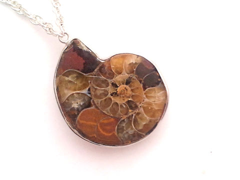 Ammonite,Fibonacci,Necklace,ammonite, fossil, fibonacci jewelry, necklace, for her