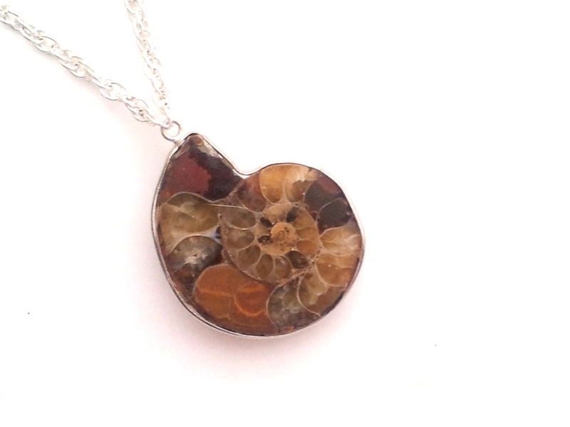 Ammonite Fibonacci Necklace - product image