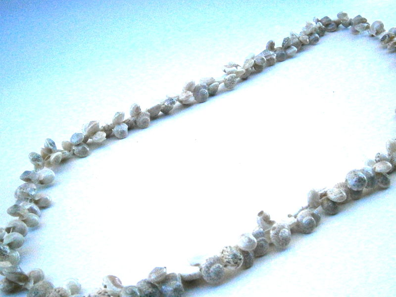 Vintage Natural Umbonium Tiny Shell Lei Hawaiian Slip On Necklace Miniature Seashells Single Strand Beach Island Wedding Villacollezione - product images  of
