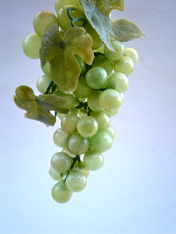 Vintage,Green,Grapes,Plastic,Vine,Display,Squeeze,Soft,Décor,Table,Setting,Bunch,Wedding,Cascading,Leaves,Harvest,Fall,Autumn,Waterfall,Party,vintage green grapes plastic fruits, green grapes cluster, green grapes vine, soft plastic green grapes, green table grapes, green wedding table setting, fall autumn harvest, waterfall grapes, green fruit display, squeeze green grapes, soft green fruit