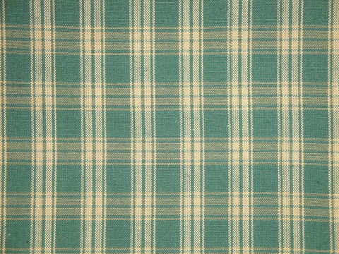 Green,And,Tea,Dye,Catawba,Plaid,Woven,Cotton,Homespun,Fabric,Supplies,rag_quilting,homespun_fabric,H41, green_plaid_fabric,homespun_material,by_the_yard_fabric,sewing_fabric,quilt_fabric,cotton_fabric,farmhouse_fabric,rustic_fabric,designer_fabric,cotton homespun material, D