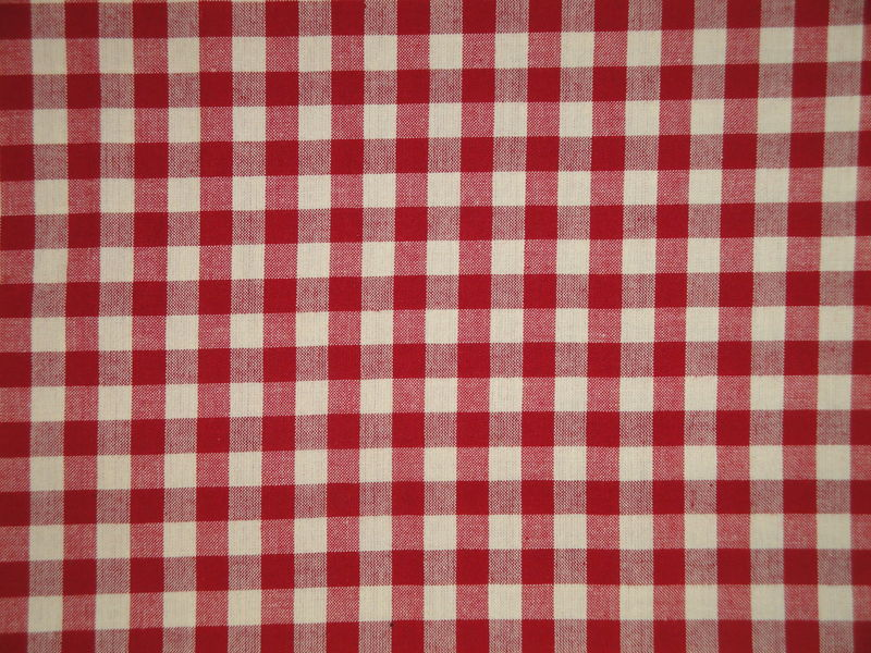 Red And Cream Woven Cotton Homespun Large Check Fabric  - product image