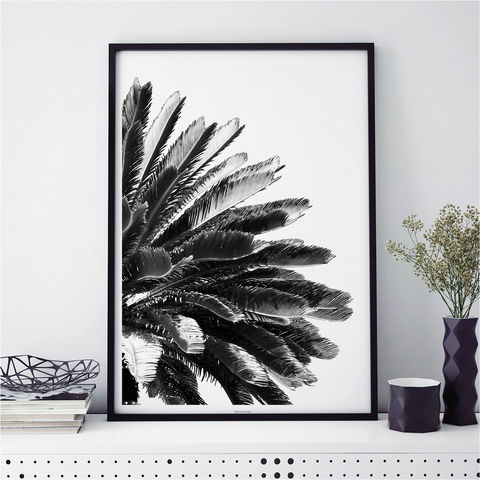 Monochrome,Prints,-,Palm,Tree,Botanical,Print,monochrome prints, botanical prints, palm tree print, minimalist art